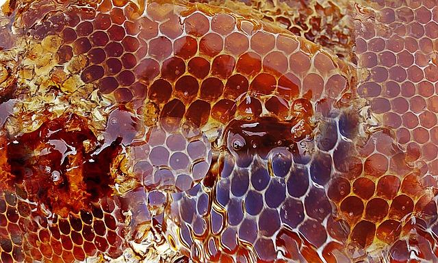 jalea-real-polen-miel-propolis-farmacia-valencia-farmaciacarabal-texto